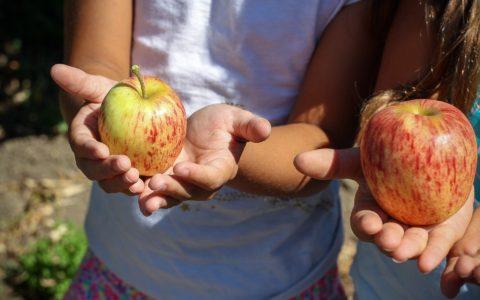 Trucs et conseils pour inculquer de saines habitudes de vie à nos enfants